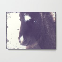 Mini Filly Grunge Metal Print
