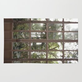 The Conservatory Doors Rug