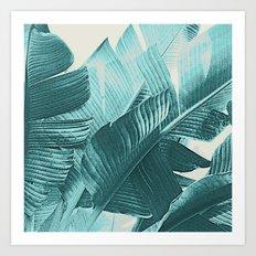 Banana Palm Art Print