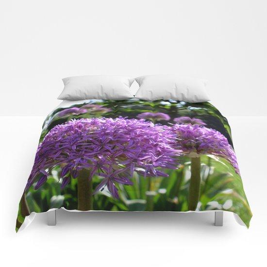 Purple Allium Giganteum Comforters