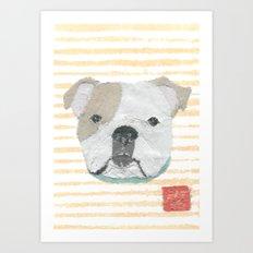 English Bulldog, Modern Art Print