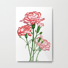 pink and red carnation watercolor painting Metal Print