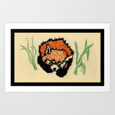 Red Panda Nap  Art Print