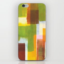 Color Block Series: Country iPhone Skin