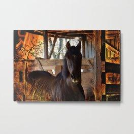Fire Horse Metal Print