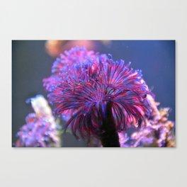 Underwater Truffula Tree Canvas Print