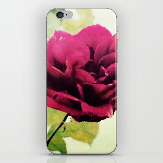 January Rose iPhone & iPod Skin