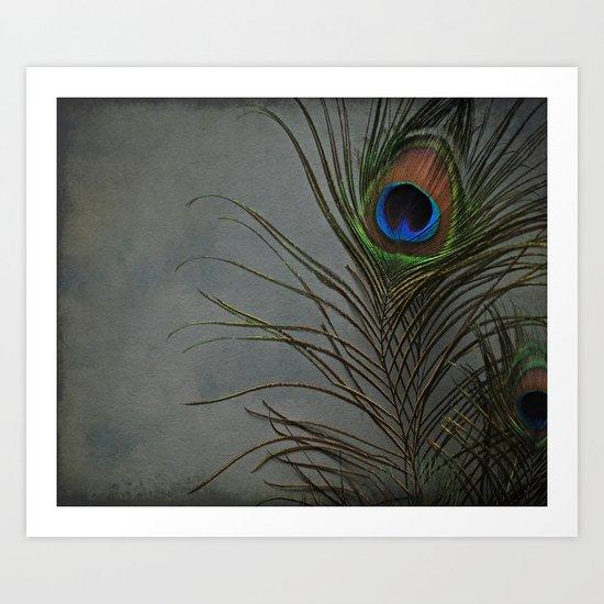 Peacock Morning Art Print
