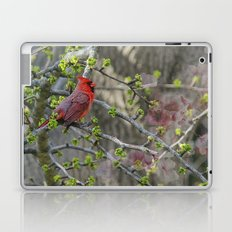 His Majesty the Cardinal Laptop & iPad Skin