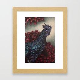 Black Rooster Red Dahlias Framed Art Print