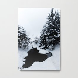 Snowy pond and trees disappearing in fog Metal Print