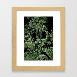 TROPICAL garden 2/5 Framed Art Print