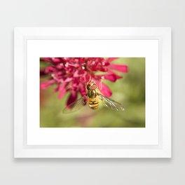 Macro flower 2 Framed Art Print