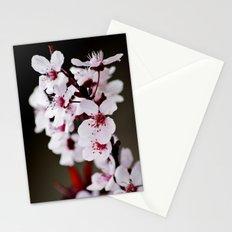 Signs of Spring 2 Stationery Cards
