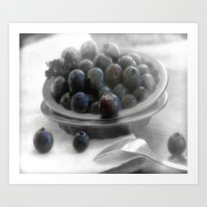 Fantastic blueberry pleasure Art Print