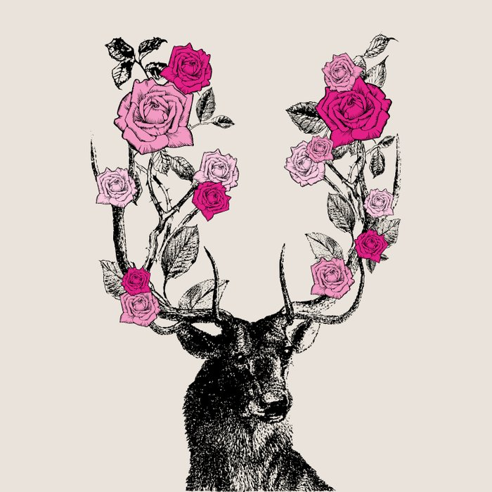 The Stag and Roses | Pink Comforters