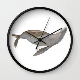 Happy Sea Lion Swimming Wall Clock
