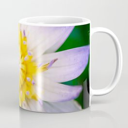 Flower photography by Hoover Tung Coffee Mug