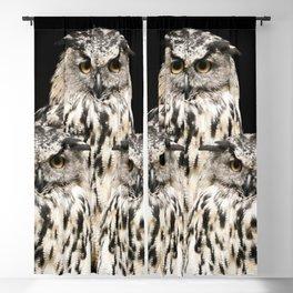Three Wise Owls on Black Background #decor #society6 #buyart Blackout Curtain