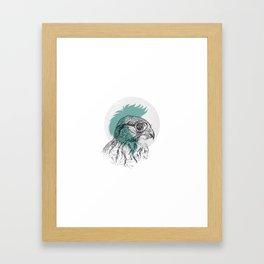 Just a little eagle Framed Art Print