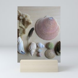 Little Beach Curiosity Collection 1 Mini Art Print