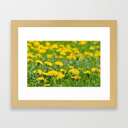 Flower_Feild Framed Art Print
