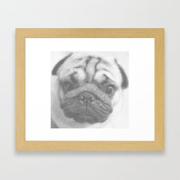 Pug Face Framed Art Print
