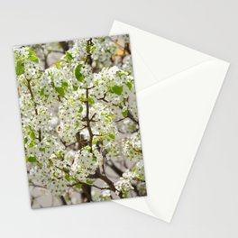 this year's blossoms Stationery Cards
