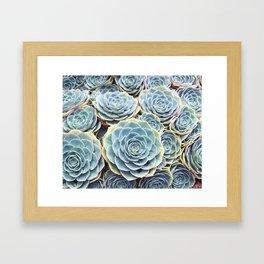 Succulent Garden Framed Art Print