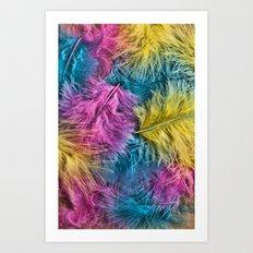 Marabou Colours Art Print
