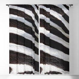 """""""Pop Safari 01 Zebra"""" Blackout Curtain"""