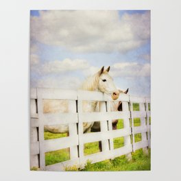 Barn Yard Dreamer Poster