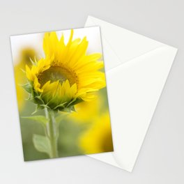 little sunflower  Stationery Cards
