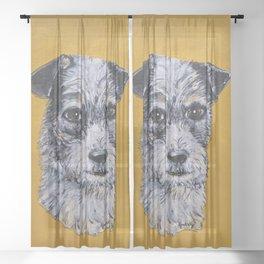 Terrier Mix Dog Portrait Sheer Curtain