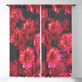 Red Mums Blackout Curtain