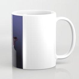dream_catcher Coffee Mug