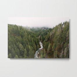 Vance Creek Metal Print