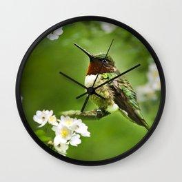 Hummingbird Flora Wall Clock