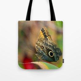 Butterfly - Caligo memnon Tote Bag