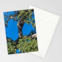 Magnificent Oak Stationery Cards