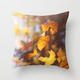 sun soaked autumn Throw Pillow