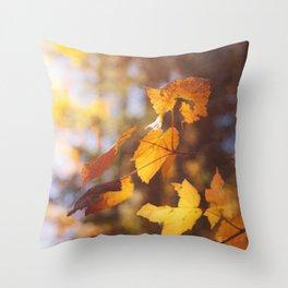 sun soaked autumn Throw Pillow