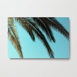 Palm Tree Blue Sky Metal Print