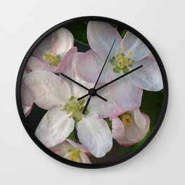 Apple tree flowers 1 Wall Clock