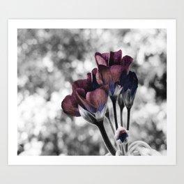 Pop of Color Flowers Eggplant Blue Art Print