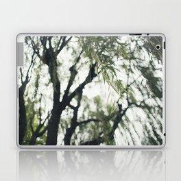 Beneath the Willow Tree Laptop & iPad Skin