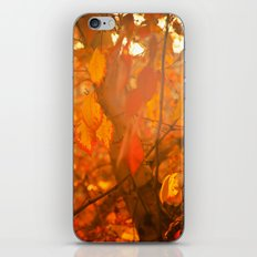Fire  Fantasy iPhone & iPod Skin