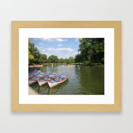 Lac Daumesnil Framed Art Print