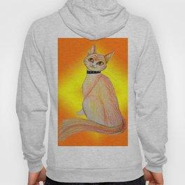 Firery Feline Hoody
