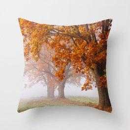 Oaks in the misty Autumn morning (Golden Polish Autumn) Throw Pillow